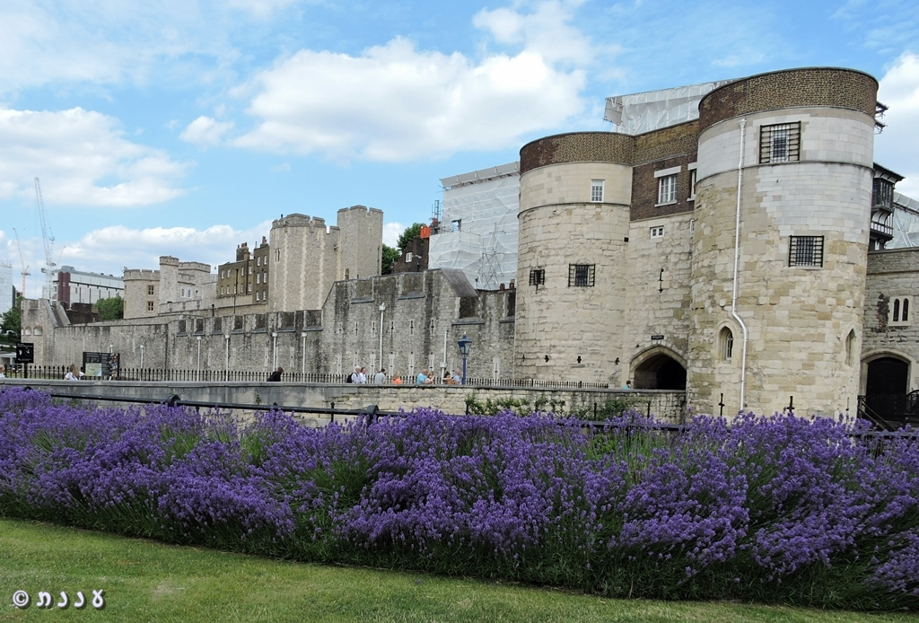 The Tower OfLondon
