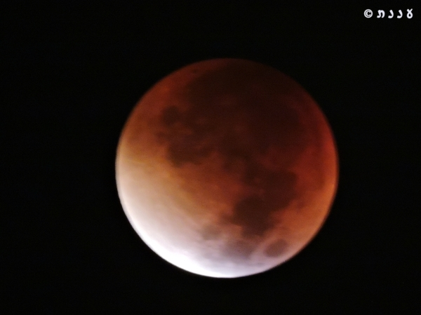 moon_0511