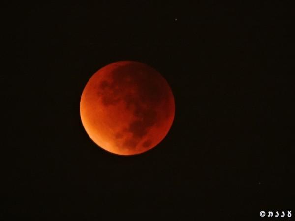 moon_0531